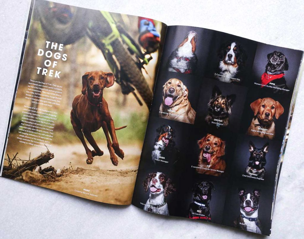 Trek catalogue dog portraits
