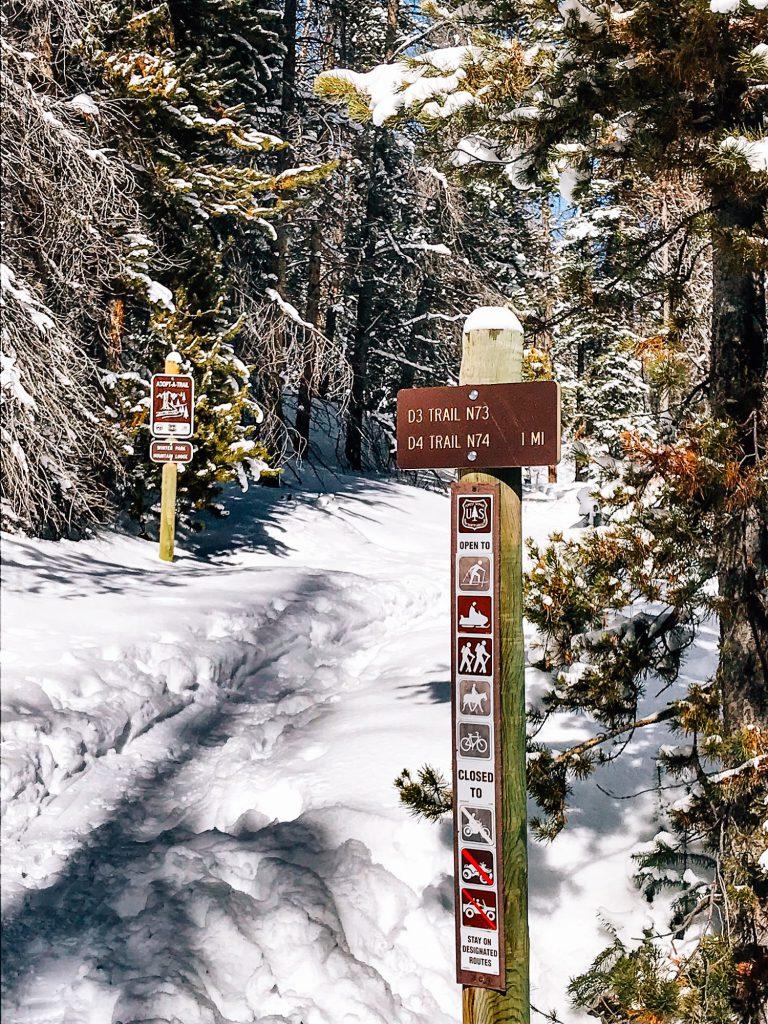 D4 D3 trail marker