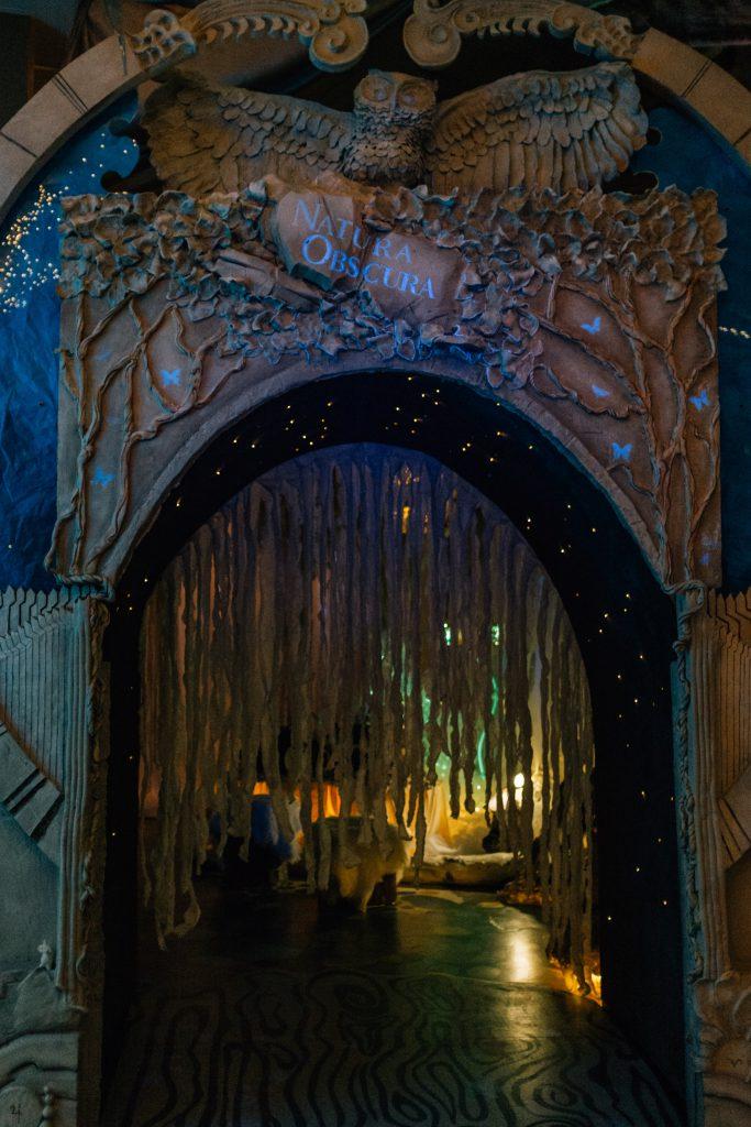 Natura Obscura tunnel