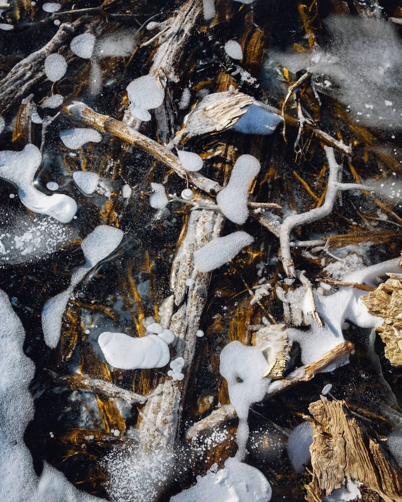 Closeup of twigs in the ice at Mills Lake
