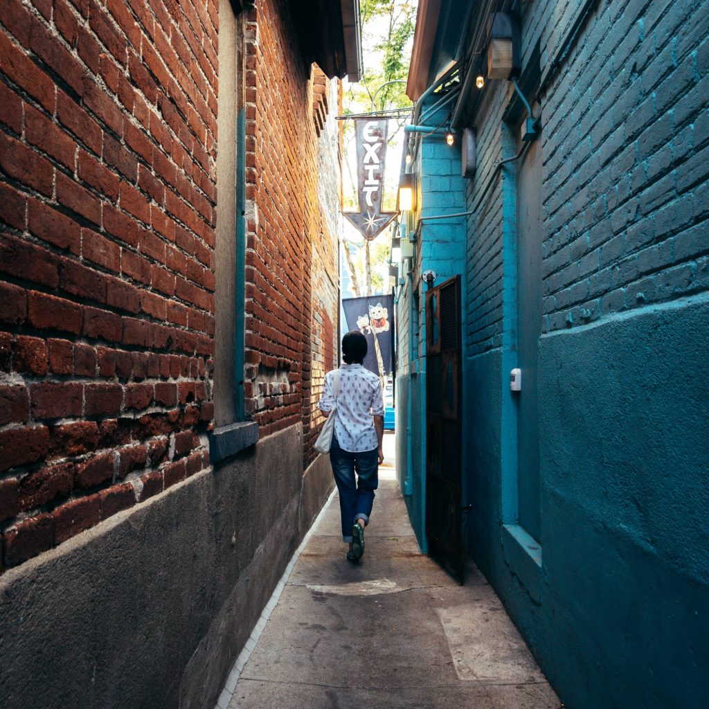 Alleyway at Sera's Ramen Enclave